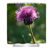 Melancholy Thistle Shower Curtain