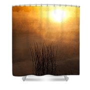 Mist And Lake Reeds At Sunrise Shower Curtain
