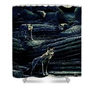 Moonlit Wolf Pack Shower Curtain