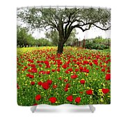 Olive Amongst Poppies Shower Curtain