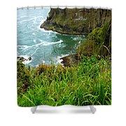 Oregon's Seaside Cliffs In Springtime Shower Curtain