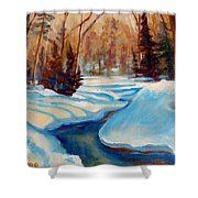 Peaceful Winding Stream Shower Curtain