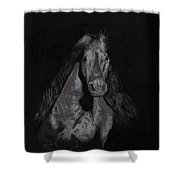 Realistic Horse Shower Curtain