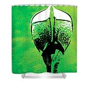 Rhino Animal Decorative Green Poster 6 - By  Diana Van Shower Curtain