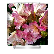 Rhododendron In Pink  Shower Curtain