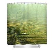 Rice Terrace  Shower Curtain