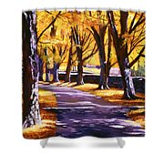Road Of Golden Beauty Shower Curtain