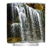 Rock Glen Falls Iphone 6s Shower Curtain