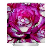 Rose Explosion Shower Curtain
