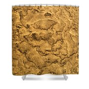 Sand Map Shower Curtain