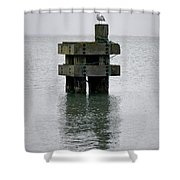 Seagull's Rest Shower Curtain