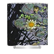 September White Water Lily Shower Curtain