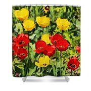 Spring Landscape With Tulips Shower Curtain