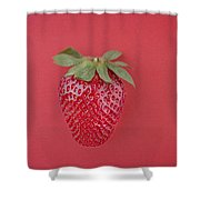 Strawberry In Red I Shower Curtain