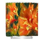 Symphonic Dance Shower Curtain