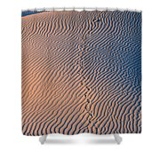 Tracks At First Light In Death Valley Shower Curtain