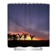 ... W Palmach Shower Curtain