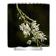 White Fireweed Shower Curtain