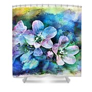 Wildflowers 5  -  Polemonium Reptans - Digital Paint 4 Shower Curtain