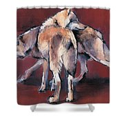 Wolf Composition Shower Curtain
