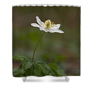 Wood Anemone Shower Curtain