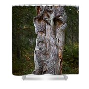 Wooden Face Shower Curtain