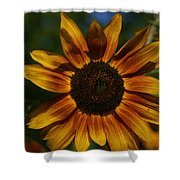 Yellow Sun Flower Shower Curtain