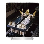 France: Tomb Of John II Shower Curtain