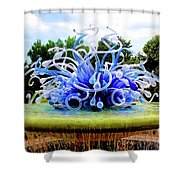 01142017061 Shower Curtain