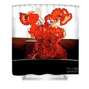 0114217114 Shower Curtain
