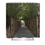 0171- Bamboo Walkway Shower Curtain