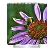 02 Bee And Echinacea Shower Curtain