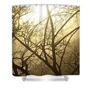 02 Foggy Sunday Sunrise Shower Curtain