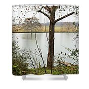 0216 Shower Curtain