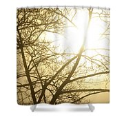 03 Foggy Sunday Sunrise Shower Curtain