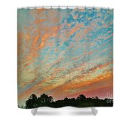03262013023 Shower Curtain