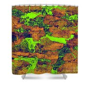 0374 Abstract Thought Shower Curtain