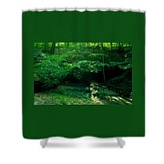 042407-45 Shower Curtain