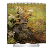 Wild Asters Shower Curtain