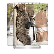060510-grizzly Back Scratch Shower Curtain