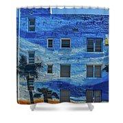 0691- Murral Shower Curtain