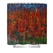 073 Abstract Thought Shower Curtain
