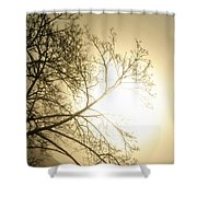 08 Foggy Sunday Sunrise Shower Curtain