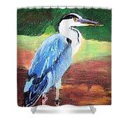 08282016 Female Blue Heron Shower Curtain
