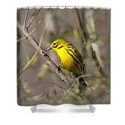 0839 -yellow Warbler Shower Curtain