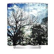 09032015039 Shower Curtain