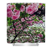 09032015056 Shower Curtain