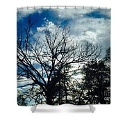 09032015068 Shower Curtain