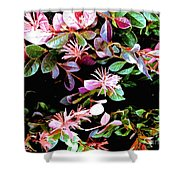 09032015073 Shower Curtain