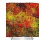 0970 Abstract Thought Shower Curtain